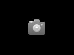 M60A1 Blazer with KMT-4 Mine Roller, Mid-East Wars